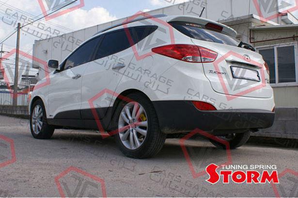 HTIX-SRST-01
